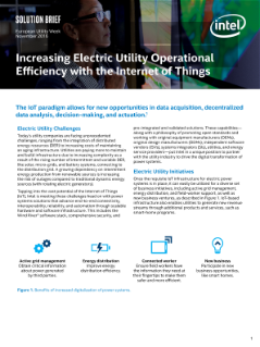Increase Electric Utility Operational Efficiency
