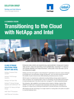 Cloud Storage Solutions from NetApp and Intel