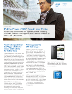 Mobile SAP Apps with Performance and Usability