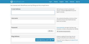 Wordpress signup form